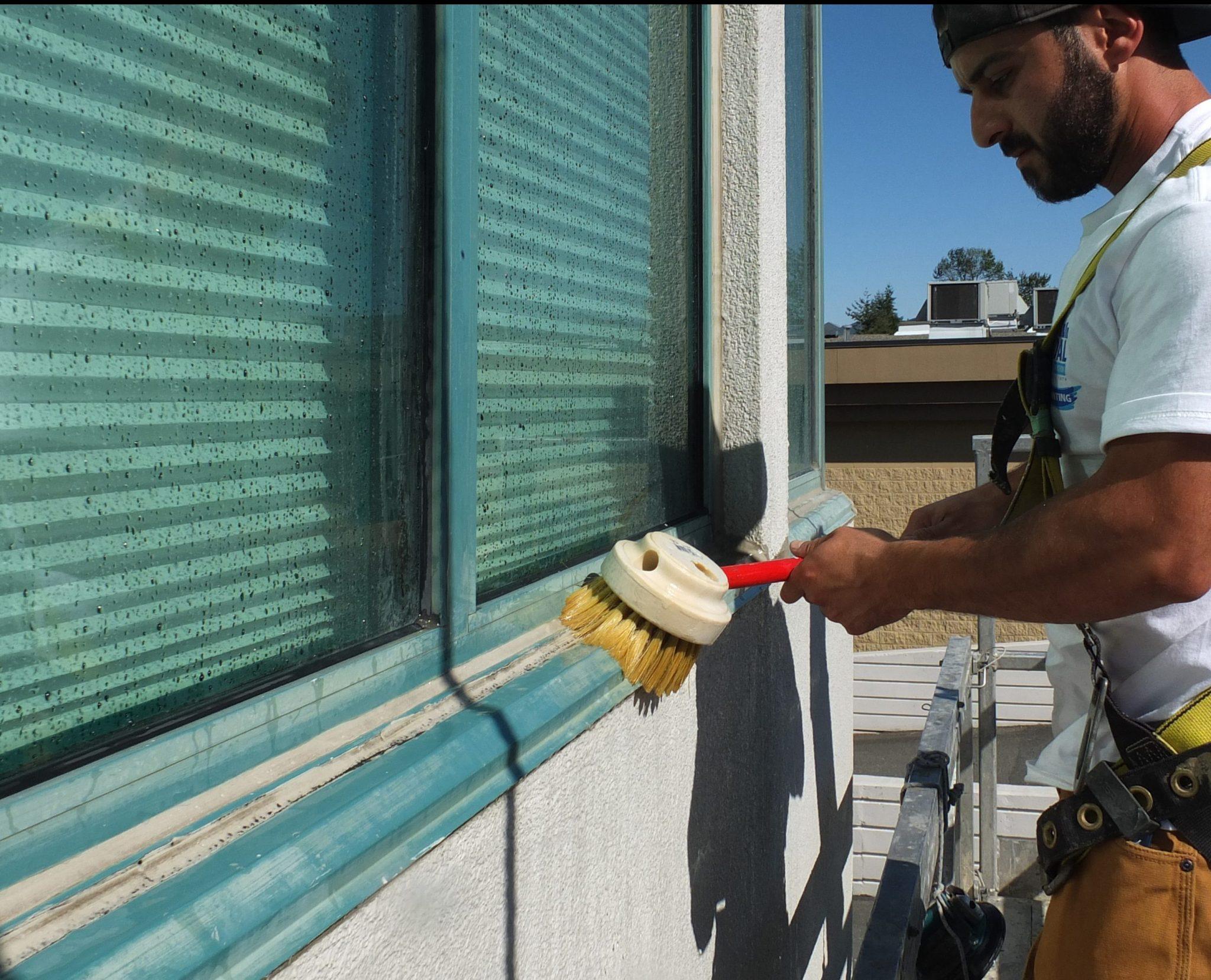 Nyalic Protectant - Remdal Painting & Restoration Inc.